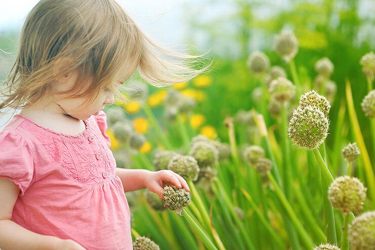 giftpflanzen-garten-kinder-liste